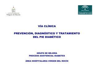 _VIRGEN DEL ROCIO  VÍA  CLINICA PIE DIABETICO.pdf