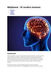 WebQuest – El cerebro humano.doc