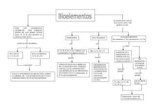 bioelementos 1.doc