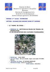 rapport culture fourrager h 2003.doc