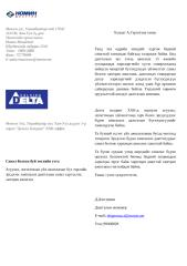 Delta LLC.docx